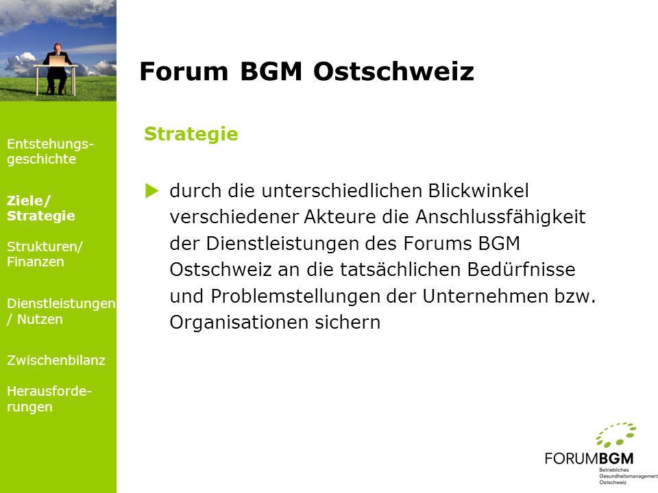 Strategie durch die unterschiedlichen Blickwinkel verschiedener Akteure die Anschlussfähigkeit der Dienstleistungen des Forums BGM Ostschweiz an die t