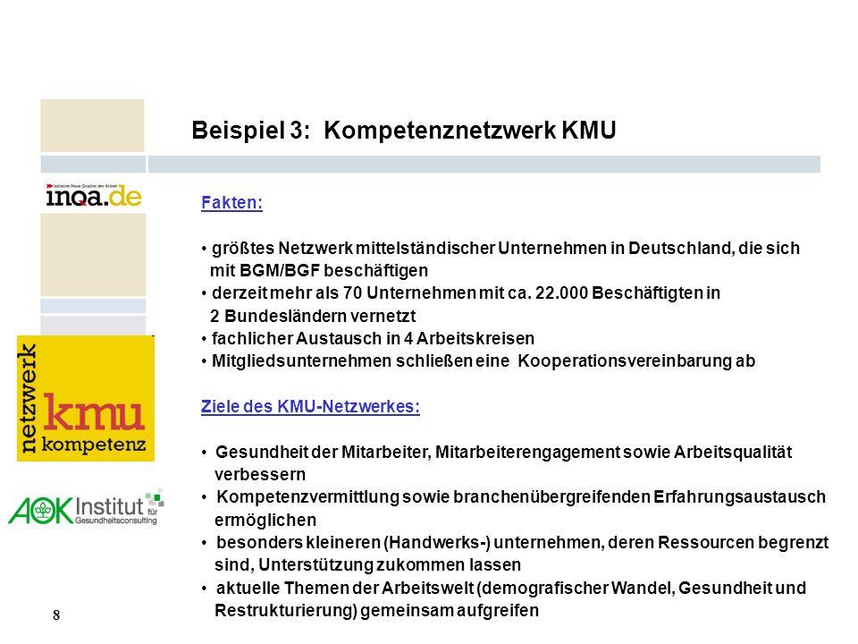 8 17.08.2006 Beispiel 3: Kompetenznetzwerk KMU Fakten: größtes Netzwerk mittelständischer Unternehmen in Deutschland, die sich mit BGM/BGF beschäftige