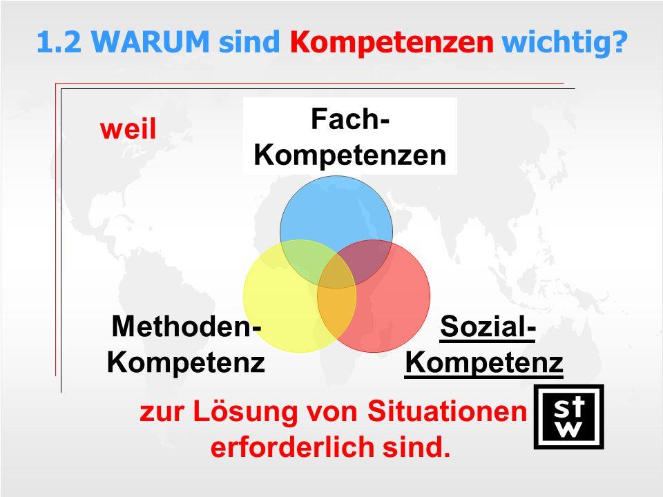 Definition: Sozialkompetenzen sind grundlegende Kooperations- und Kommunikationstechniken zur Lösung von Situationen (die durch sozial-kommunikatives Lernen erworben werden).