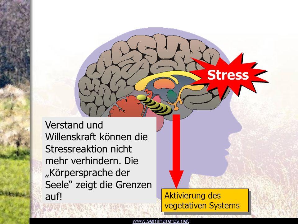www.seminare-ps.net 1. Informations-Overload 2. Gefühlslabilisierung (Alarm!) 3. Speicherblockade 4. Kontroll-Versagen 3 Limbisches System Hippocampus