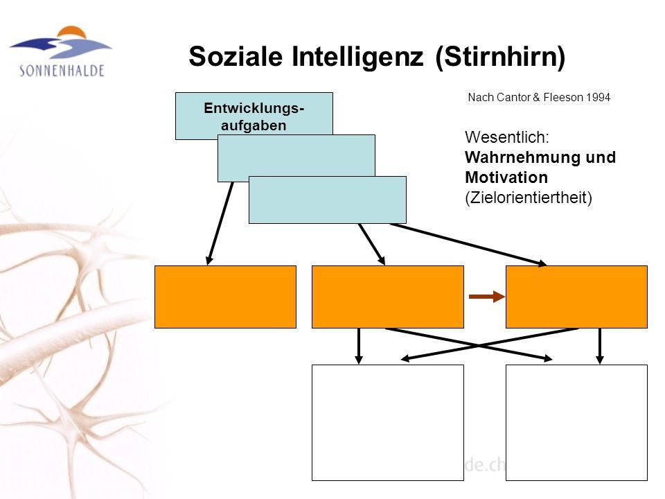 Soziale Intelligenz (Stirnhirn) Nach Cantor & Fleeson 1994 Entwicklungs- aufgaben Wesentlich: Wahrnehmung und Motivation (Zielorientiertheit)
