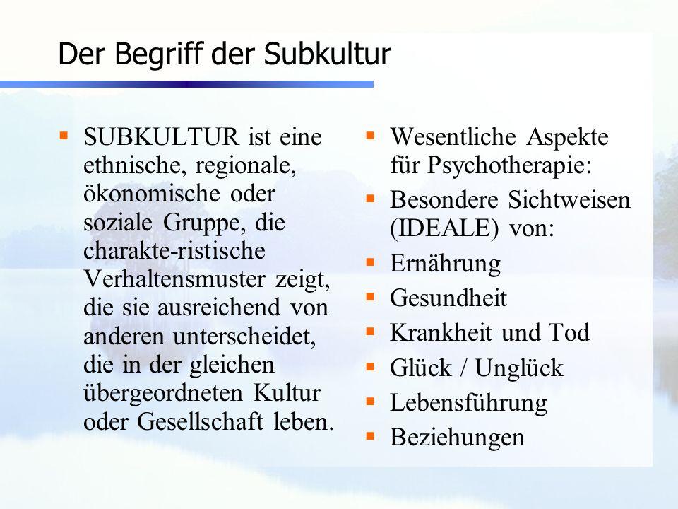 Der Begriff der Subkultur SUBKULTUR ist eine ethnische, regionale, ökonomische oder soziale Gruppe, die charakte-ristische Verhaltensmuster zeigt, die