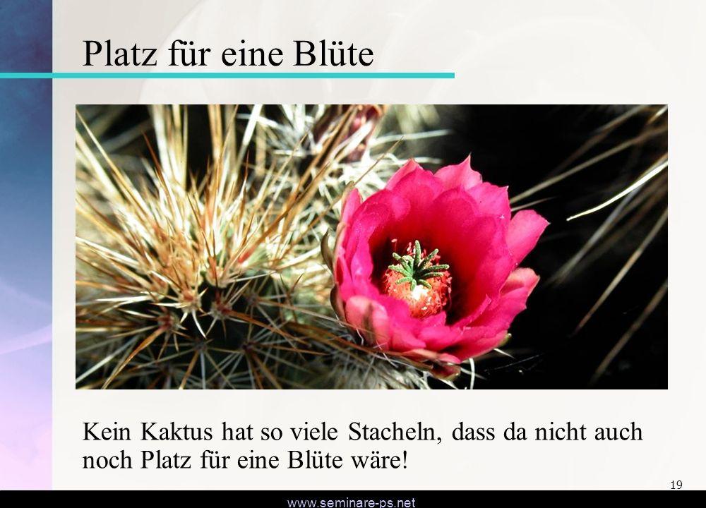 www.seminare-ps.net 19 Platz für eine Blüte Kein Kaktus hat so viele Stacheln, dass da nicht auch noch Platz für eine Blüte wäre!