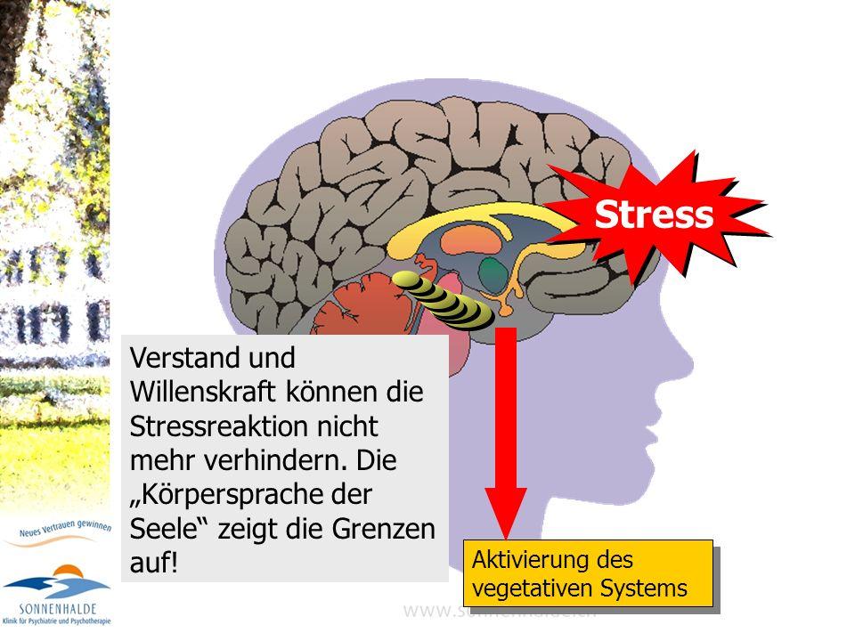 1. Informations-Overload 2. Gefühlslabilisierung (Alarm!) 3. Speicherblockade 4. Kontroll-Versagen 3 Limbisches System Hippocampus Gedächtnis 2 Stirnh