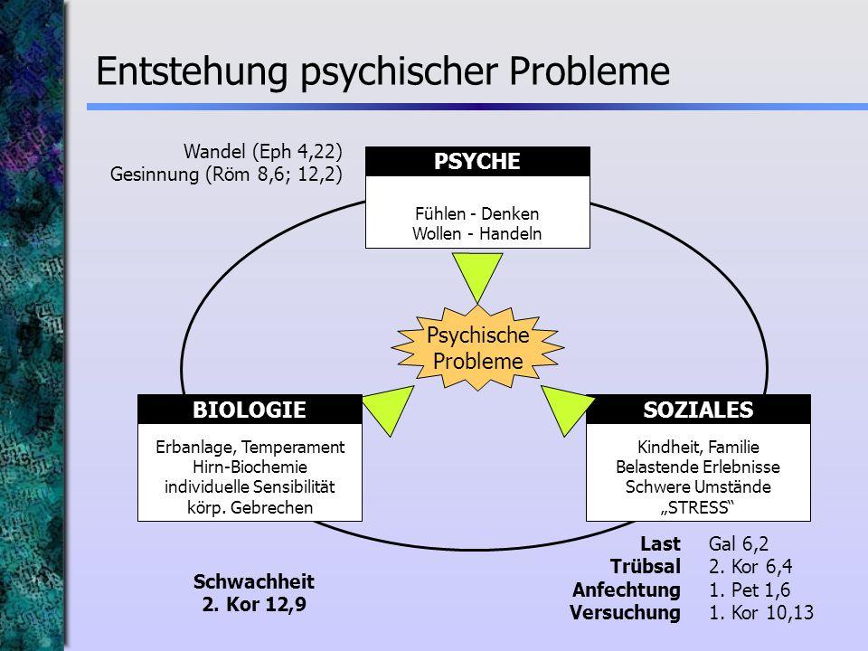 Entstehung psychischer Probleme Fühlen - Denken Wollen - Handeln PSYCHE Kindheit, Familie Belastende Erlebnisse Schwere Umstände STRESS SOZIALES Psych