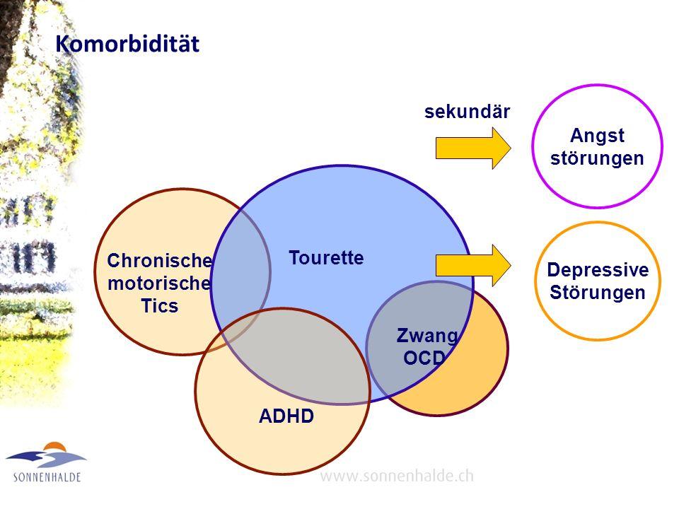Schweregrad Leichte einzelne motorische Tics Multiple motorische Tics Kombinierte motorische und vokale Tics –Einfache bis komplexe Tics –Leichte (z.B