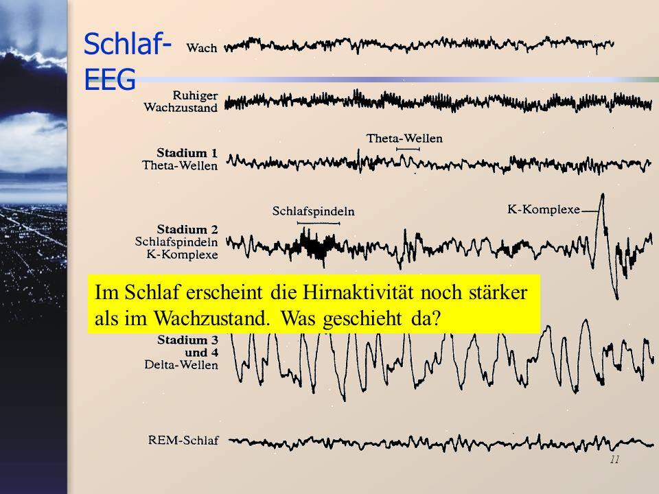 11 Schlaf- EEG Im Schlaf erscheint die Hirnaktivität noch stärker als im Wachzustand. Was geschieht da?