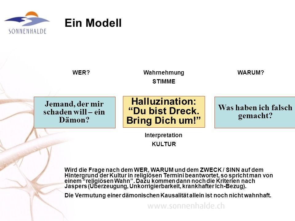 Ein Modell Halluzination: Du bist Dreck. Bring Dich um! Wahrnehmung STIMME Interpretation KULTUR WARUM? Was haben ich falsch gemacht? WER? Jemand, der