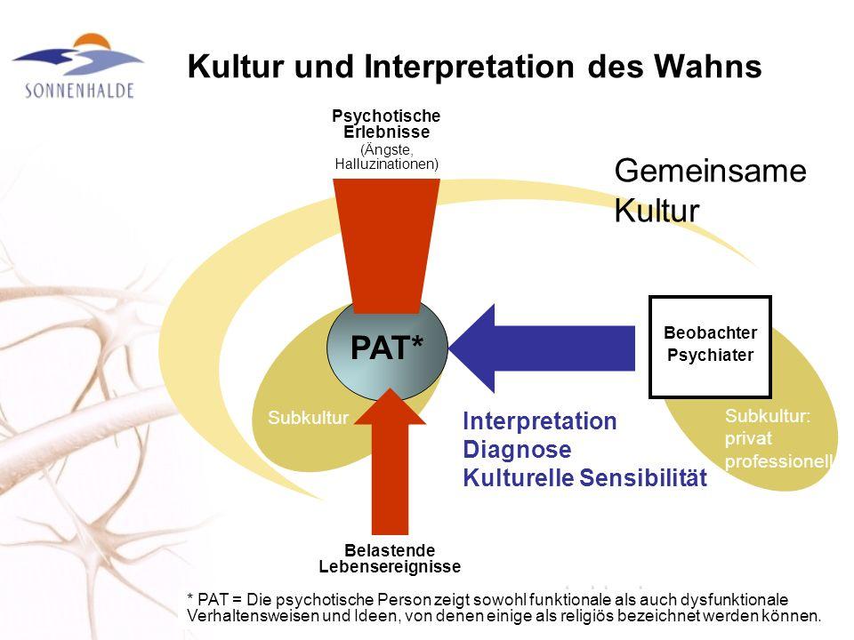Kultur und Interpretation des Wahns PAT* Subkultur Gemeinsame Kultur Psychotische Erlebnisse (Ängste, Halluzinationen) Belastende Lebensereignisse Beo
