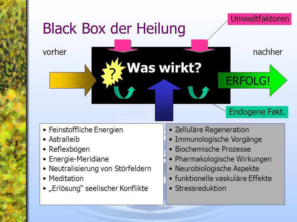 Black Box der Heilung Feinstoffliche Energien Astralleib Reflexbögen Energie-Meridiane Neutralisierung von Störfeldern Meditation Erlösung seelischer