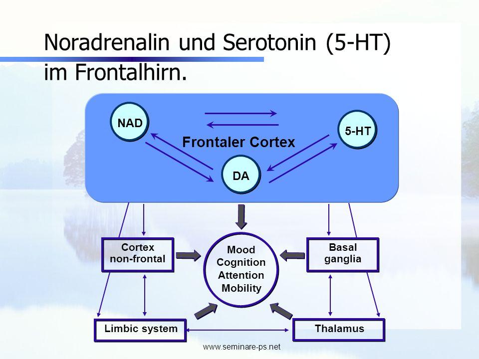www.seminare-ps.net Noradrenalin und Serotonin (5-HT) im Frontalhirn. NAD 5-HT DA Mood Cognition Attention Mobility Cortex non-frontal Basal ganglia F