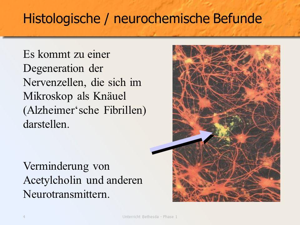 Unterricht Bethesda - Phase 14 Histologische / neurochemische Befunde Es kommt zu einer Degeneration der Nervenzellen, die sich im Mikroskop als Knäue
