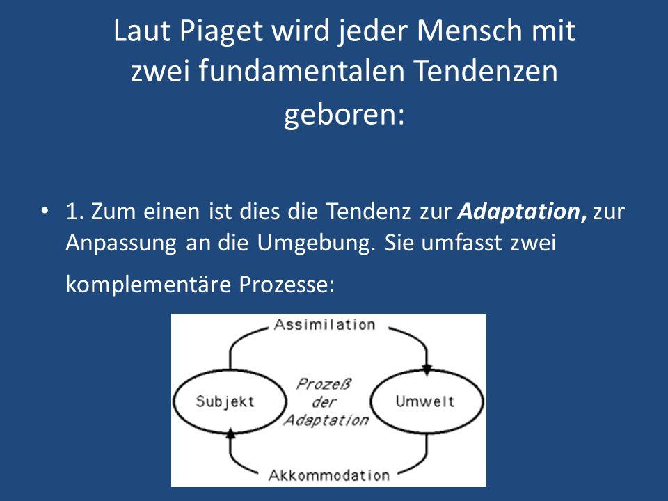 Laut Piaget wird jeder Mensch mit zwei fundamentalen Tendenzen geboren: 1.
