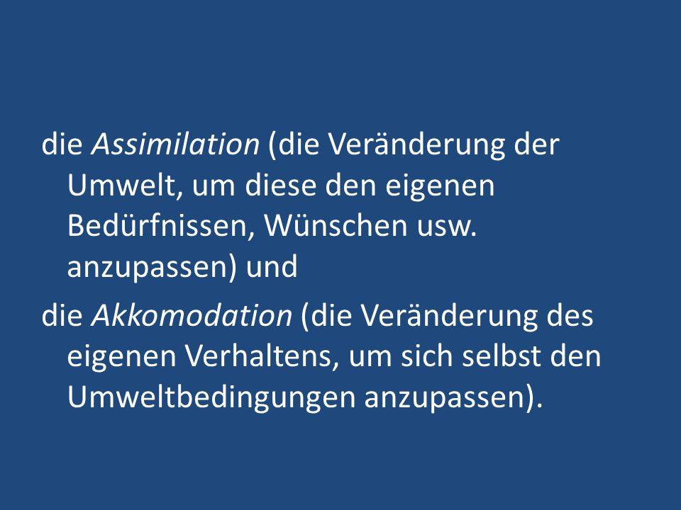 die Assimilation (die Veränderung der Umwelt, um diese den eigenen Bedürfnissen, Wünschen usw.