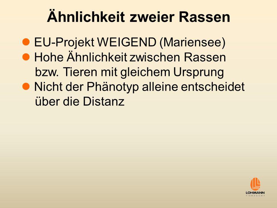 Ähnlichkeit zweier Rassen EU-Projekt WEIGEND (Mariensee) Hohe Ähnlichkeit zwischen Rassen bzw. Tieren mit gleichem Ursprung Nicht der Phänotyp alleine