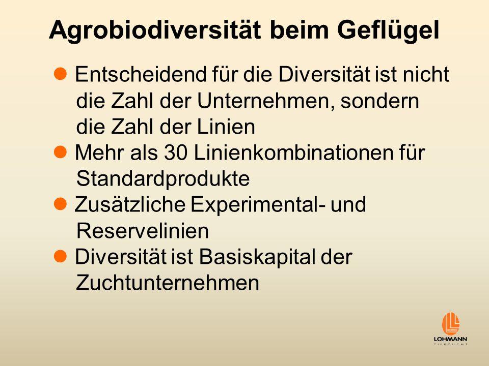 Agrobiodiversität beim Geflügel Entscheidend für die Diversität ist nicht die Zahl der Unternehmen, sondern die Zahl der Linien Mehr als 30 Linienkomb
