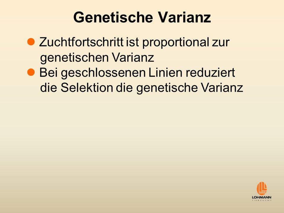 Genetische Varianz Zuchtfortschritt ist proportional zur genetischen Varianz Bei geschlossenen Linien reduziert die Selektion die genetische Varianz