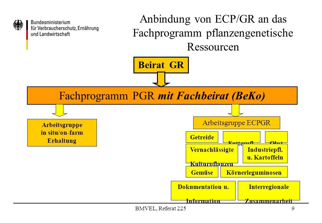 BMVEL, Referat 2259 Anbindung von ECP/GR an das Fachprogramm pflanzengenetische Ressourcen Fachprogramm PGR mit Fachbeirat (BeKo) Getreide Futterpfl.Obst Industriepfl.