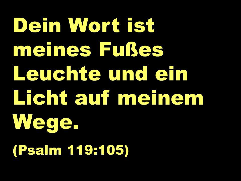 Dein Wort... Dein Wort ist meines Fußes Leuchte und ein Licht auf meinem Wege. (Psalm 119:105)