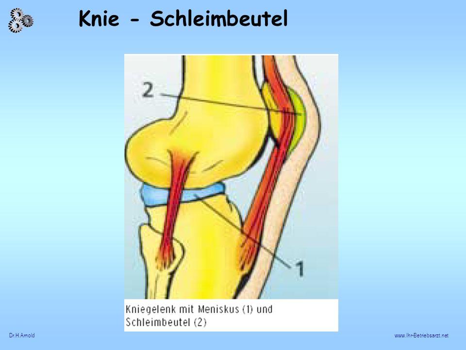 Dr.H.Arnoldwww.Ihr-Betriebsarzt.net Knie - Schleimbeutel
