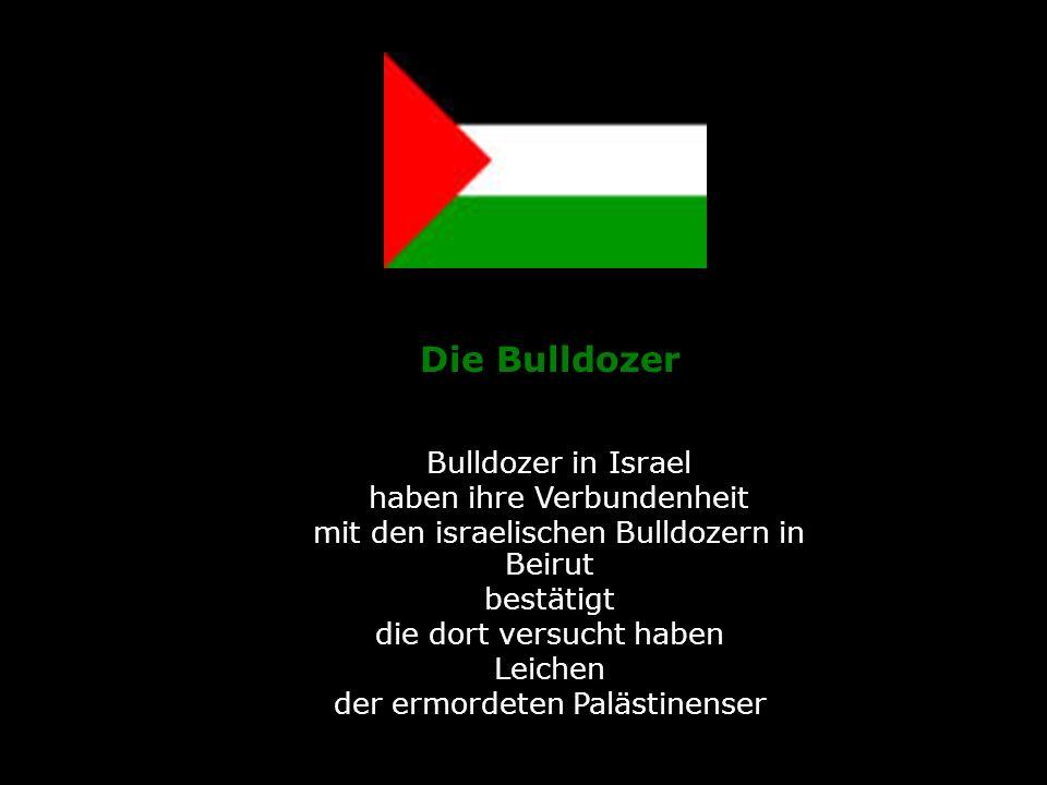Die Bulldozer Bulldozer in Israel haben ihre Verbundenheit mit den israelischen Bulldozern in Beirut bestätigt die dort versucht haben Leichen der erm