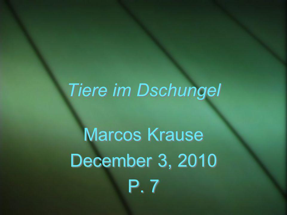 Tiere im Dschungel Marcos Krause December 3, 2010 P. 7 Marcos Krause December 3, 2010 P. 7
