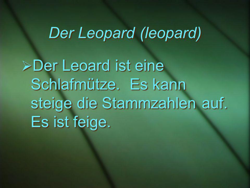 Der Leopard (leopard) Der Leoard ist eine Schlafmütze.
