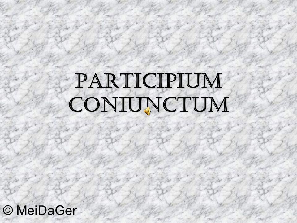 Participium Coniunctum © MeiDaGer