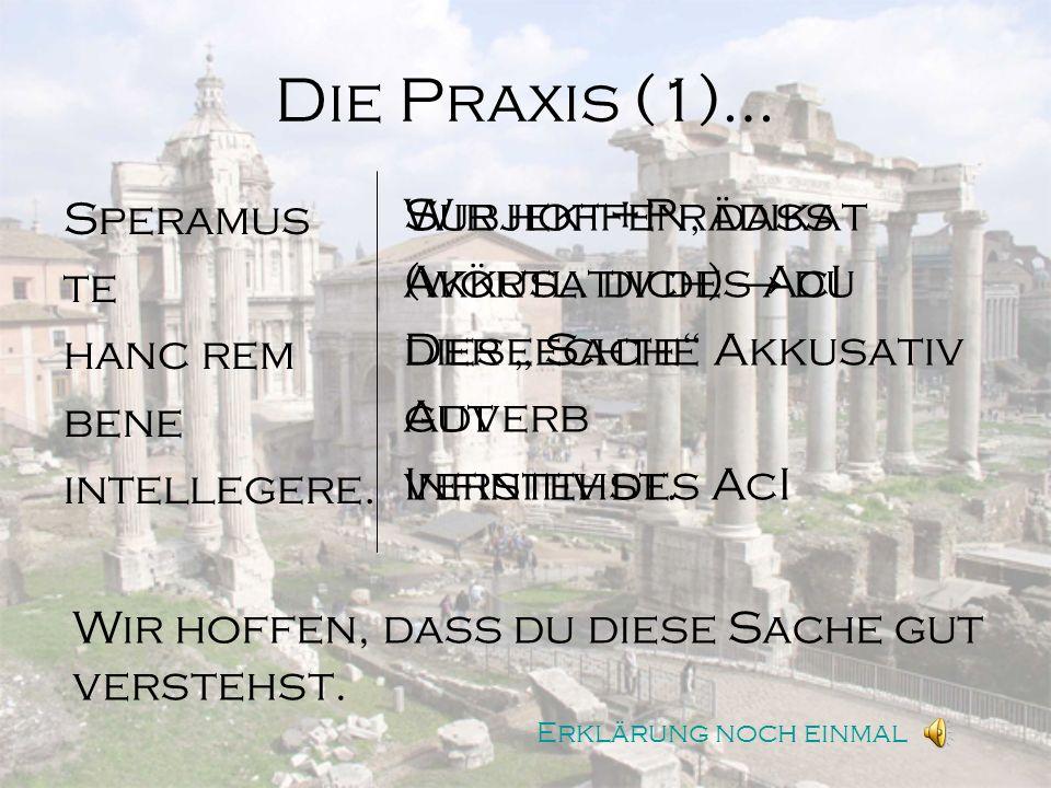 Die Praxis (2)… Priamos dicit Troianis se Graecos non vincere potuisse.