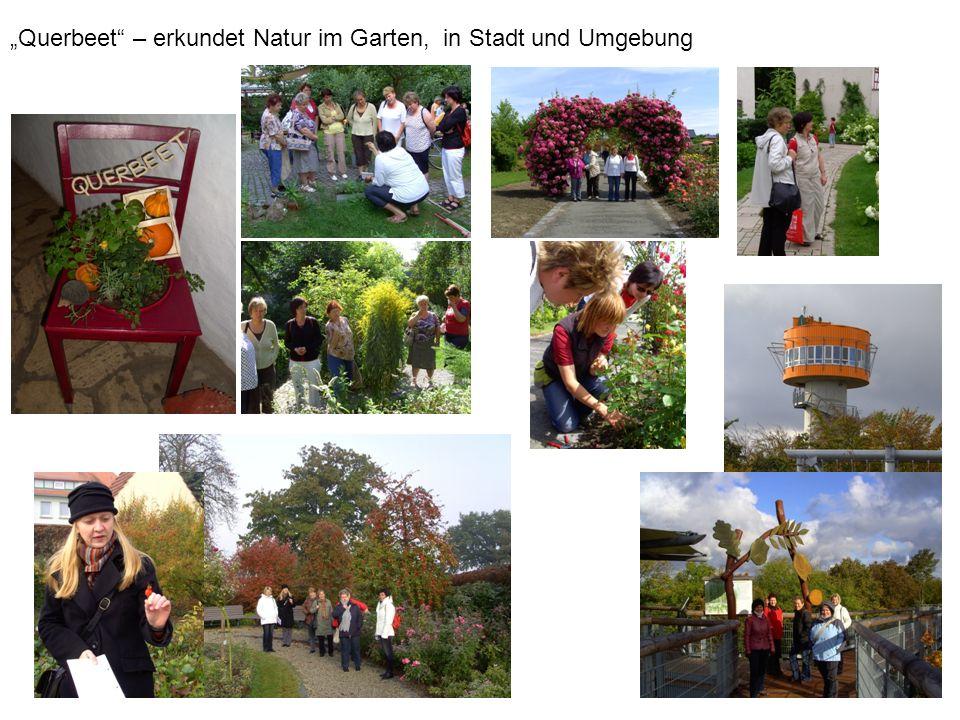 Querbeet – erkundet Natur im Garten, in Stadt und Umgebung