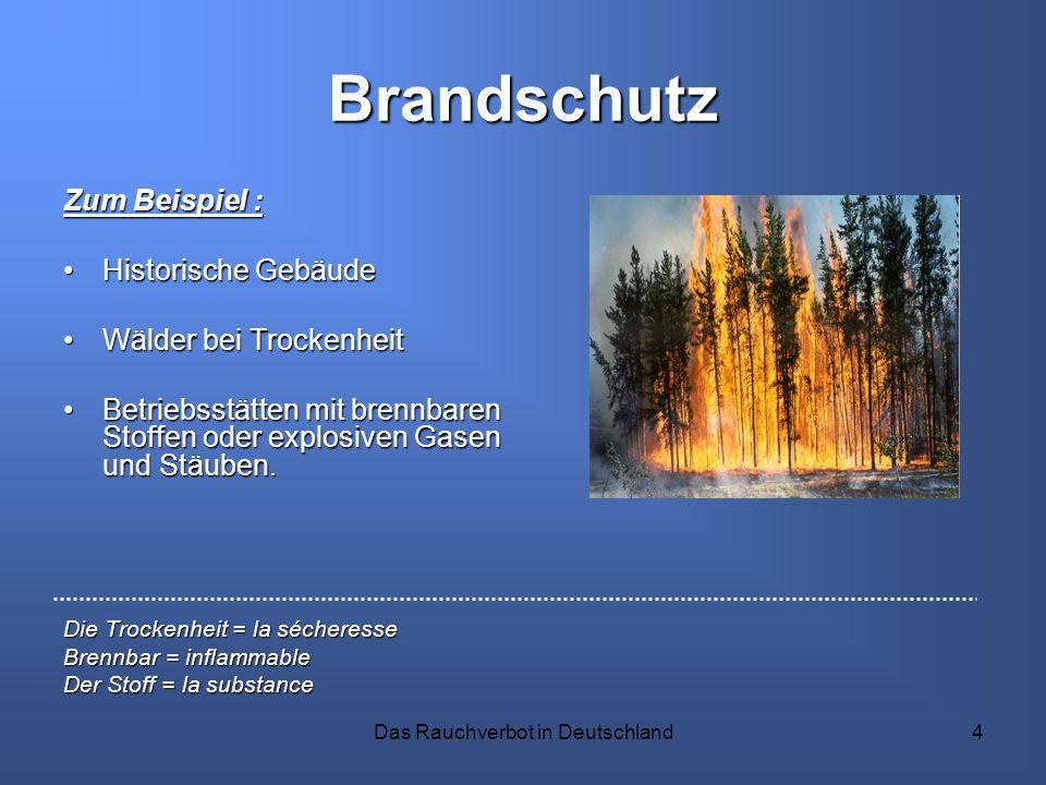 Das Rauchverbot in Deutschland4 Brandschutz Zum Beispiel : Historische GebäudeHistorische Gebäude Wälder bei TrockenheitWälder bei Trockenheit Betrieb