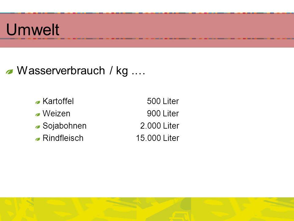 Umwelt Wasserverbrauch / kg.… Kartoffel 500 Liter Weizen 900 Liter Sojabohnen 2.000 Liter Rindfleisch15.000 Liter