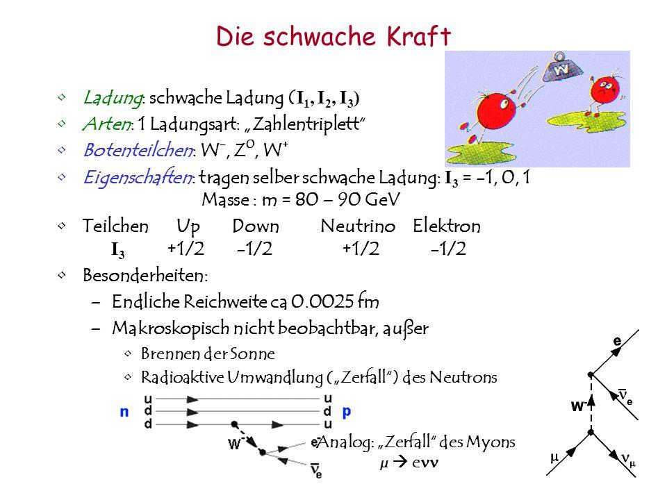 Ladung: schwache Ladung ( I 1, I 2, I 3 ) Arten: 1 Ladungsart: Zahlentriplett Botenteilchen: W -, Z 0, W + Eigenschaften: tragen selber schwache Ladun
