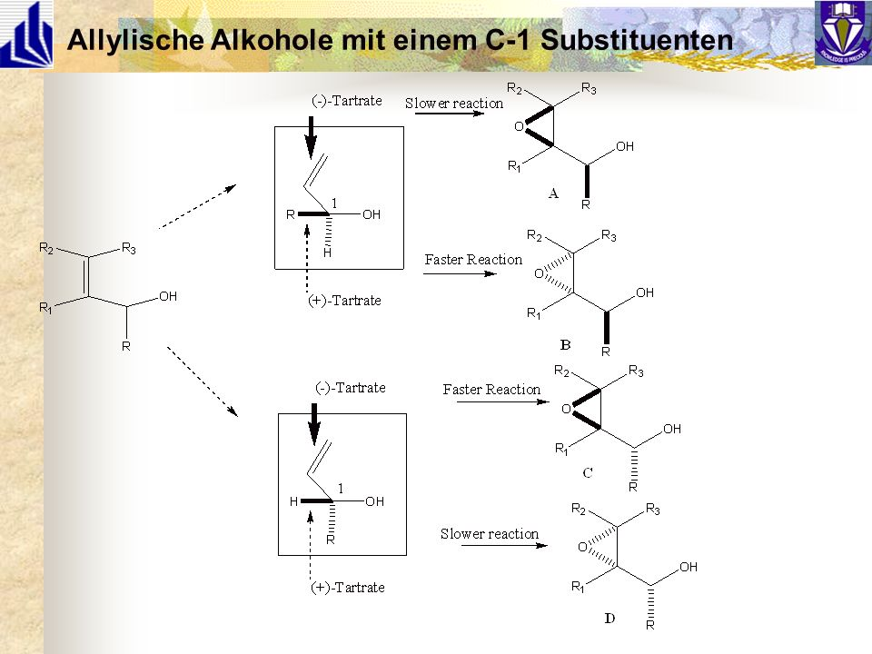 Allylische Alkohole mit einem C-1 Substituenten