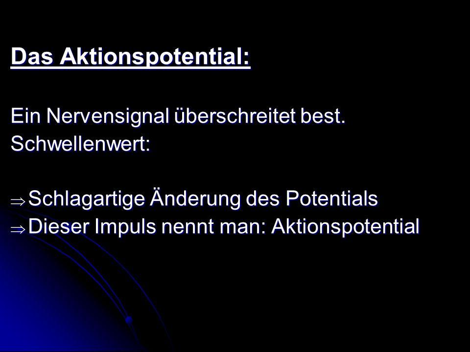 Das Aktionspotential: Ein Nervensignal überschreitet best. Schwellenwert: Schlagartige Änderung des Potentials Schlagartige Änderung des Potentials Di