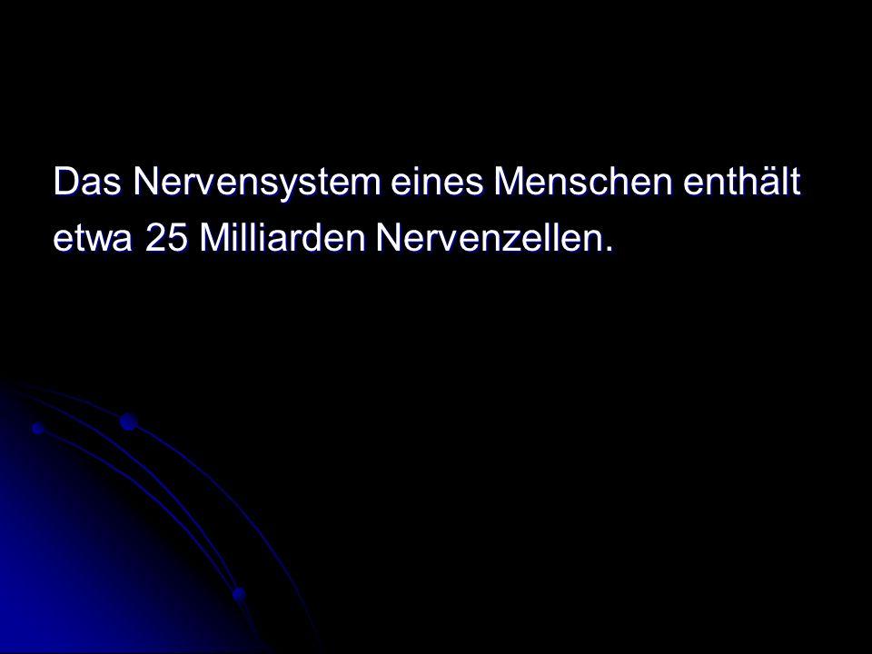 Das Nervensystem eines Menschen enthält etwa 25 Milliarden Nervenzellen.