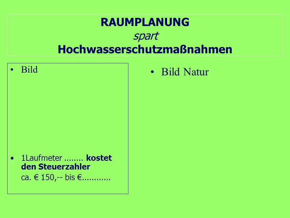 Kann sich die Steiermark keine Raumplanung leisten?