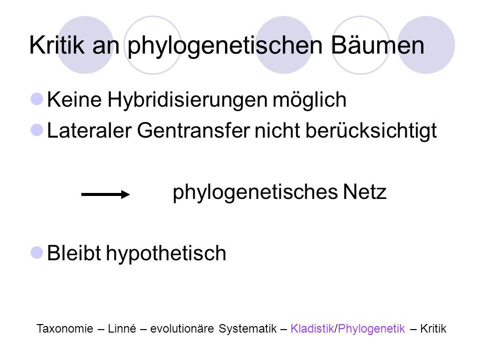 Kritik an phylogenetischen Bäumen Keine Hybridisierungen möglich Lateraler Gentransfer nicht berücksichtigt phylogenetisches Netz Bleibt hypothetisch