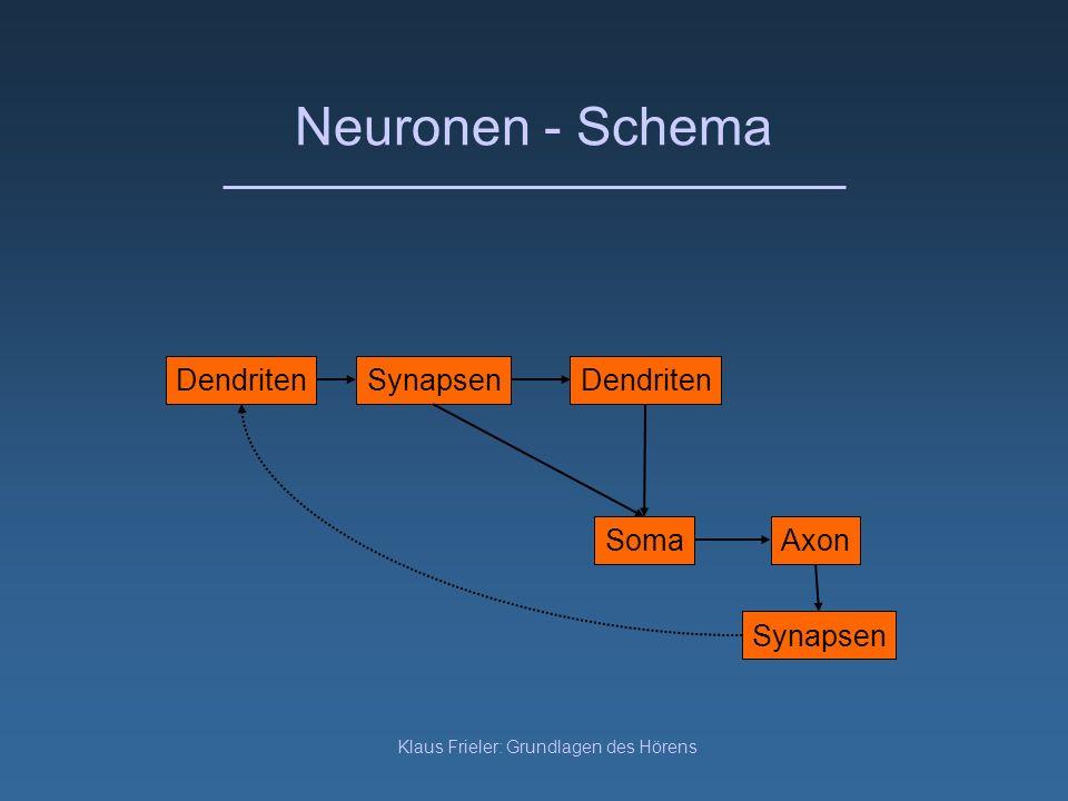 Klaus Frieler: Grundlagen des Hörens Neuronen - Schema DendritenSynapsenDendriten SomaAxon Synapsen