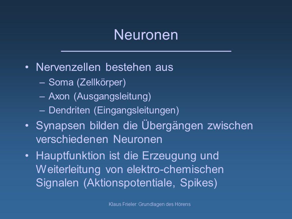 Klaus Frieler: Grundlagen des Hörens Neuronen Nervenzellen bestehen aus –Soma (Zellkörper) –Axon (Ausgangsleitung) –Dendriten (Eingangsleitungen) Syna