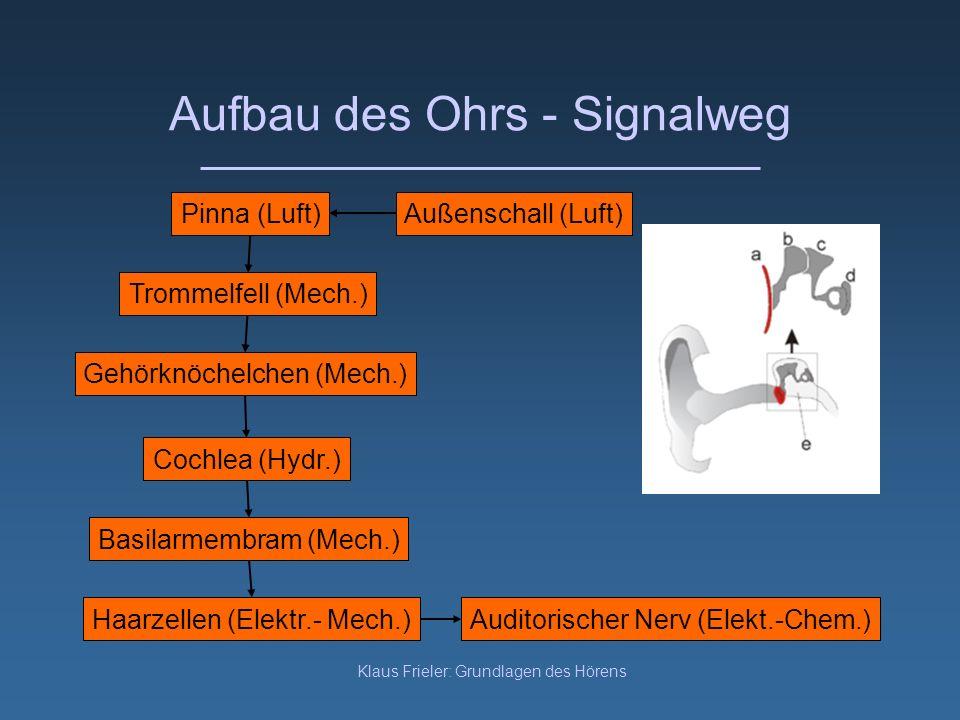 Klaus Frieler: Grundlagen des Hörens Aufbau des Ohrs - Signalweg Außenschall (Luft)Pinna (Luft) Trommelfell (Mech.) Gehörknöchelchen (Mech.) Cochlea (