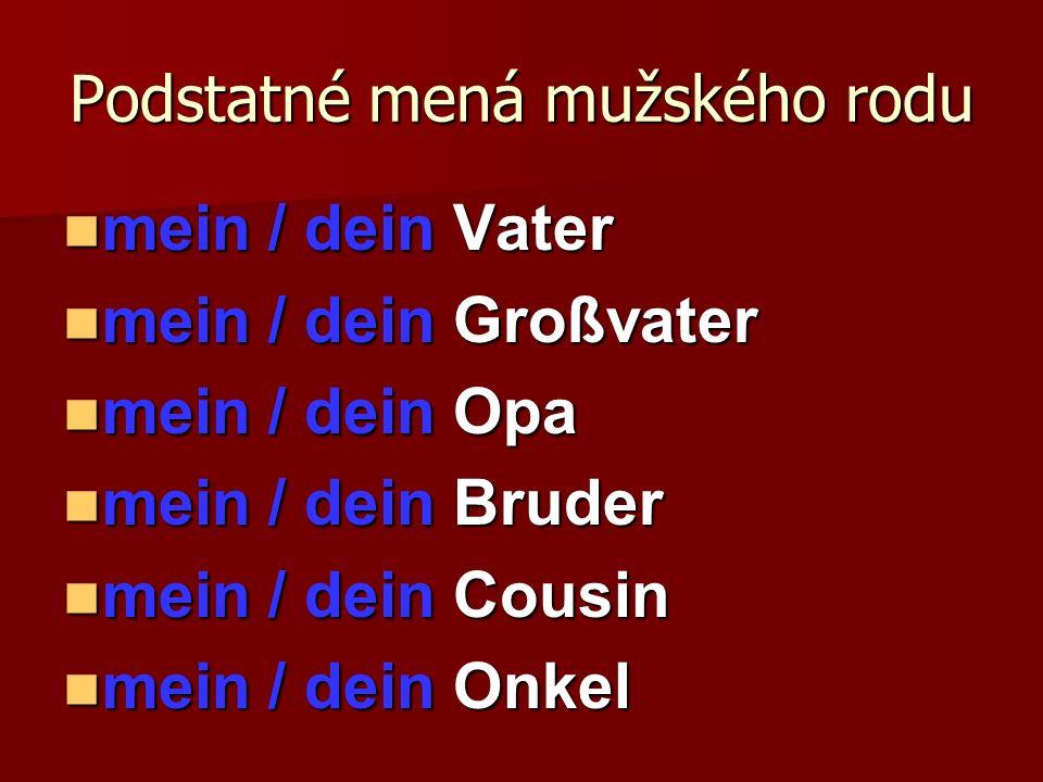 Podstatné mená mužského rodu mein / dein Vater mein / dein Vater mein / dein Großvater mein / dein Großvater mein / dein Opa mein / dein Opa mein / de