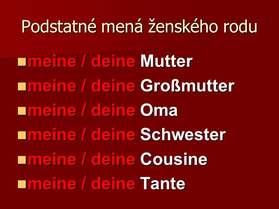 Podstatné mená ženského rodu meine / deine Mutter meine / deine Mutter meine / deine Großmutter meine / deine Großmutter meine / deine Oma meine / dei