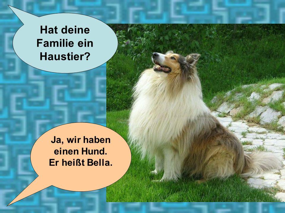 25 Hat deine Familie ein Haustier? Ja, wir haben einen Hund. Er heißt Bella.