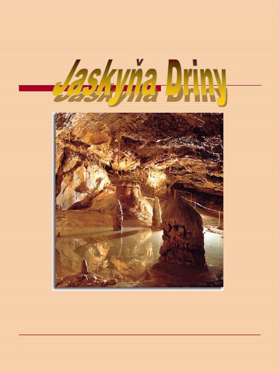 Driny wurde 1929 von J.Banic und J. Vajsabel entdeckt und 1934 für Besucher zugänglich gemacht.