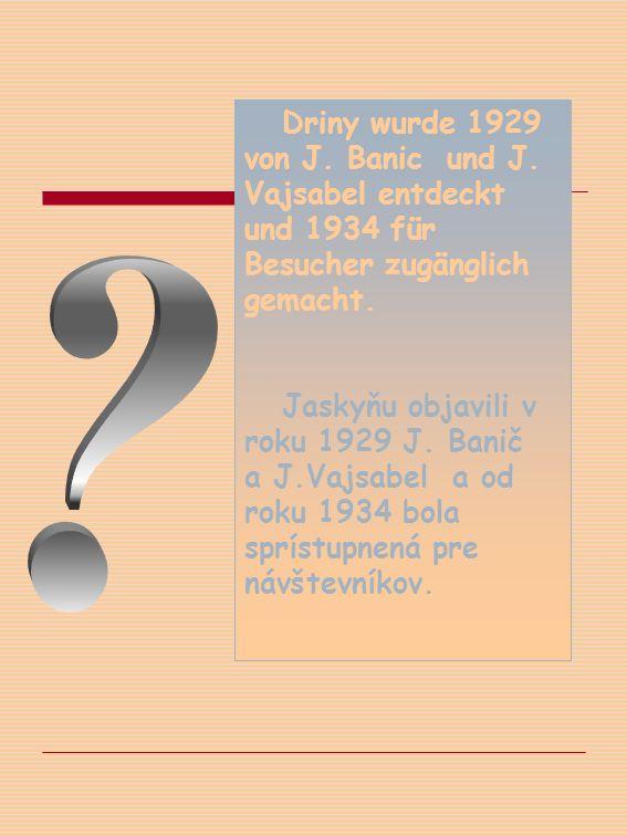 Driny wurde 1929 von J. Banic und J. Vajsabel entdeckt und 1934 für Besucher zugänglich gemacht.