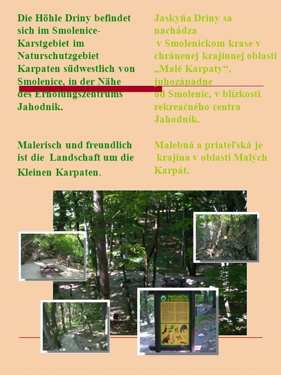 Die Höhle Driny befindet sich im Smolenice- Karstgebiet im Naturschutzgebiet Karpaten südwestlich von Smolenice, in der Nähe des Erholungszentrums Jahodnik.