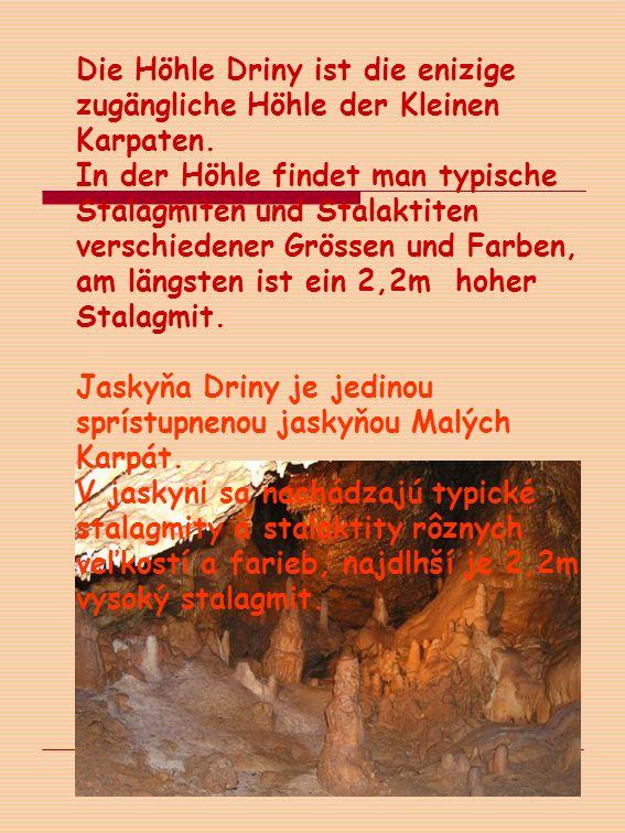 Die Höhle Driny ist die enizige zugängliche Höhle der Kleinen Karpaten.
