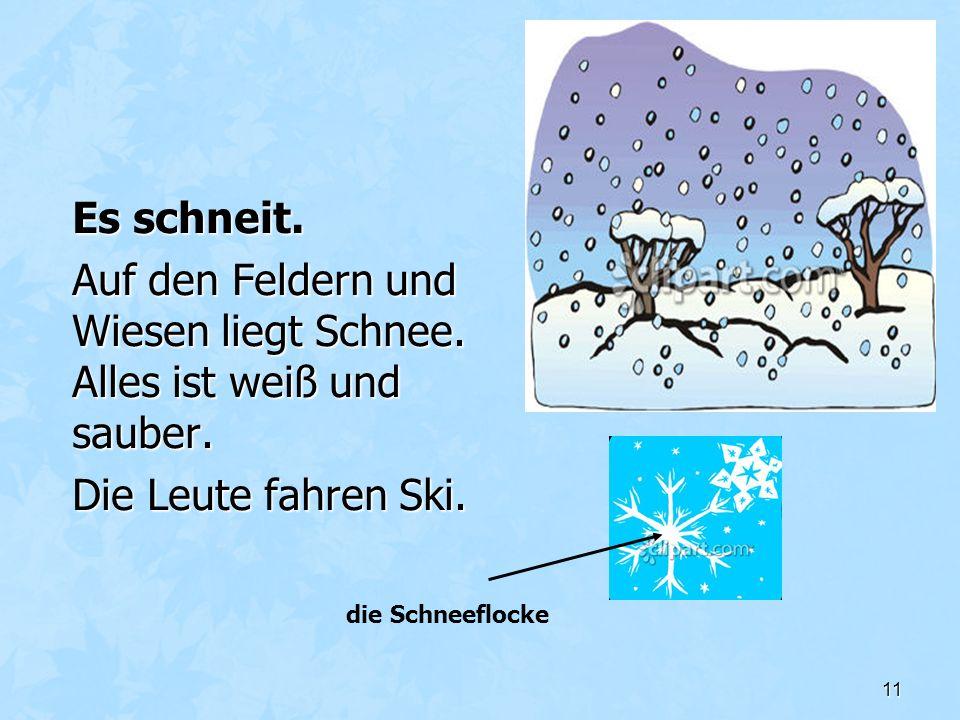 11 Es schneit. Auf den Feldern und Wiesen liegt Schnee. Alles ist weiß und sauber. Die Leute fahren Ski. die Schneeflocke