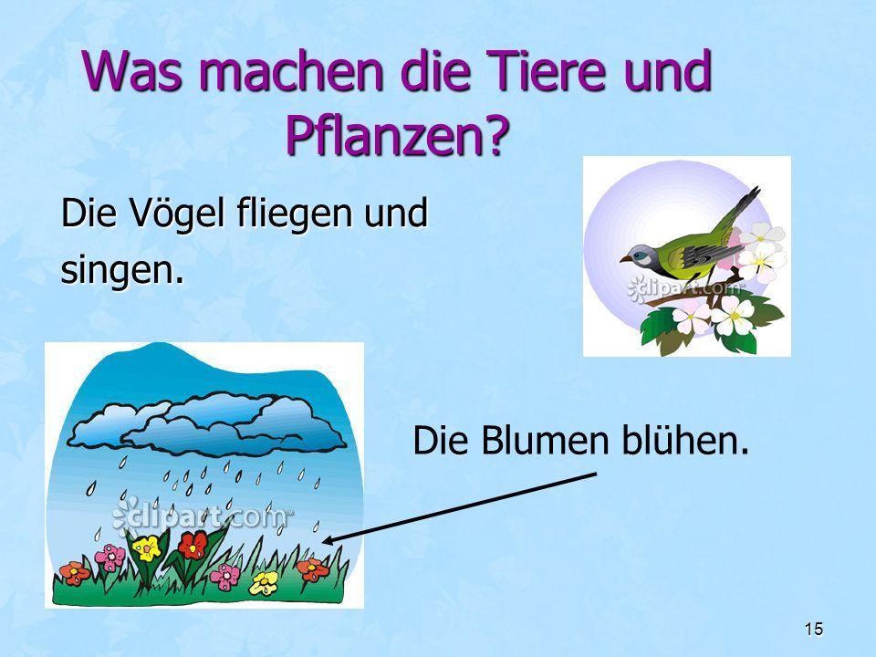 15 Was machen die Tiere und Pflanzen? Die Vögel fliegen und singen. Die Blumen blühen.